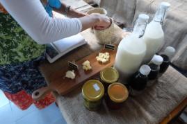 Mazaraat Artisan Cheese